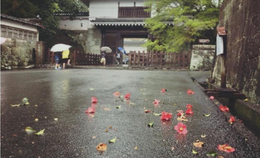 雨の日はさらに風情が増す。飫肥の城下町を歩こう1