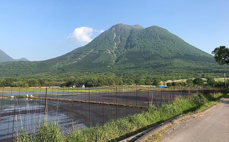 大分から1時間、由布岳の山麓で贅沢に過ごす 「The sense of wonder holistic glamping」へ!21