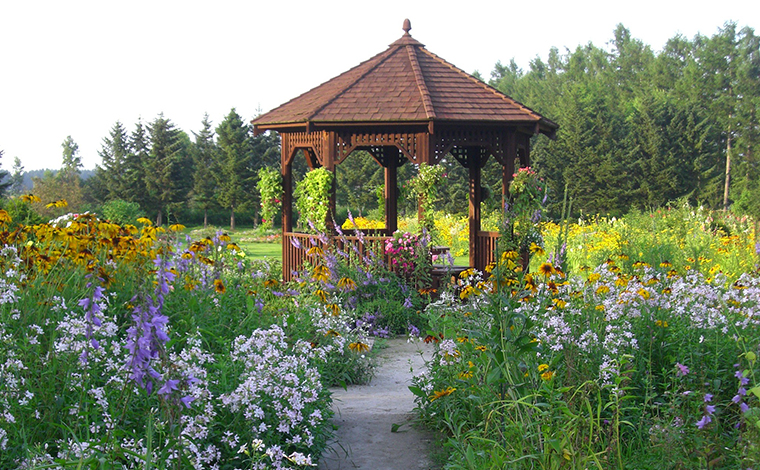 おばあちゃんの夢が詰まったお花畑「紫竹ガーデン」1