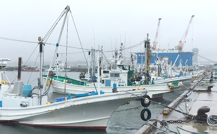 港町のお楽しみ、漁港とれたての海鮮料理1