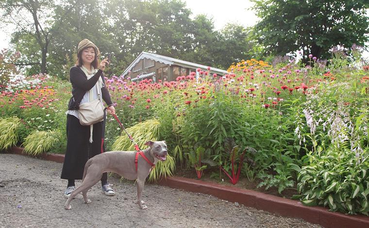 行ってきました、愛犬と一緒に夏の北海道ドライブ!17