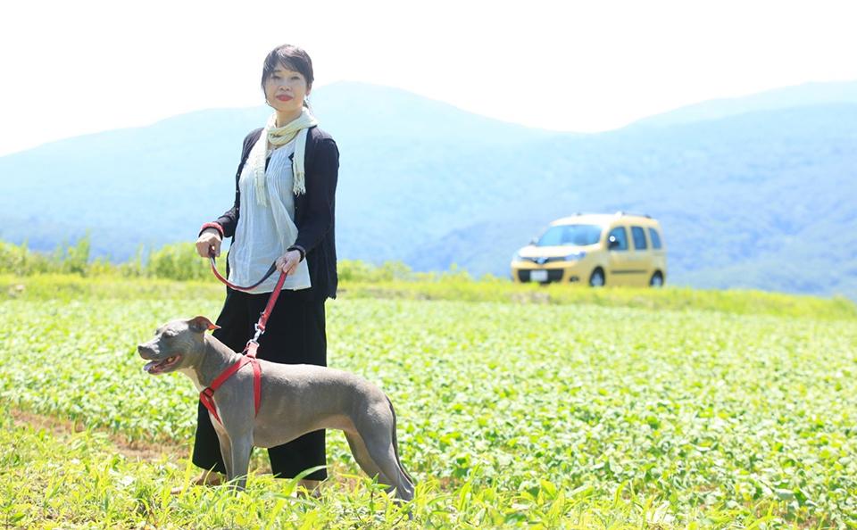 行ってきました、愛犬と一緒に夏の北海道ドライブ!アイキャッチ