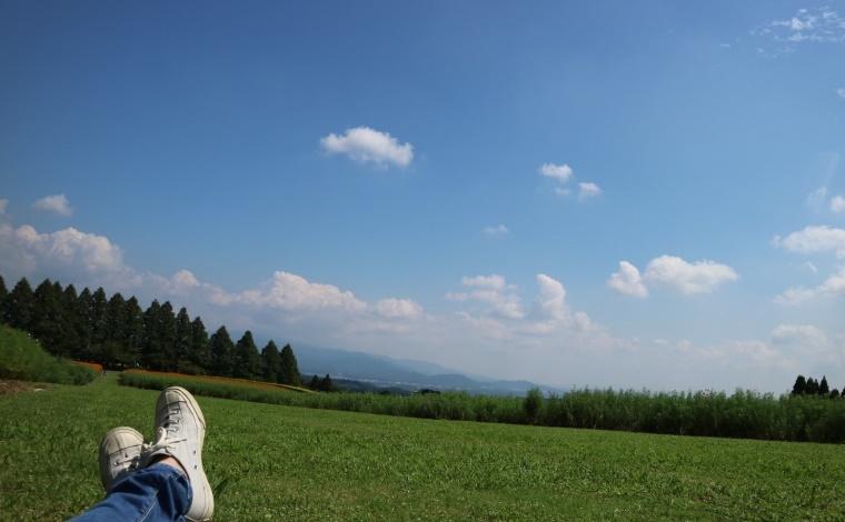 その2:生駒高原に咲き誇る、100万本にも及ぶコスモス畑(小林市)5