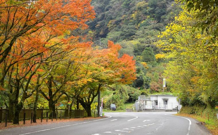 志布志到着。目覚めれば大雨…めげずに桜島を見に行こう!3