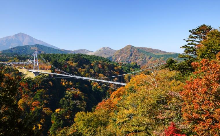 日本一の大吊橋で根性試し!3