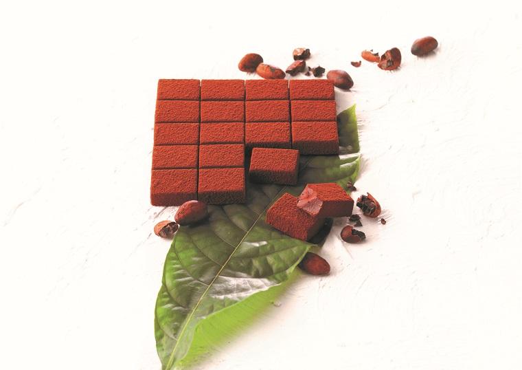 ロイズの創業35周年記念限定商品「生チョコレート ロイズカカオファーム」2