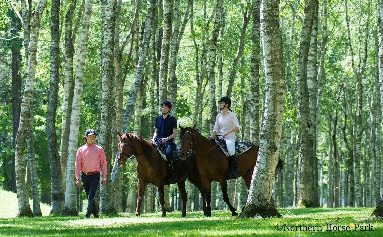 大自然の中で馬と遊ぼう!7