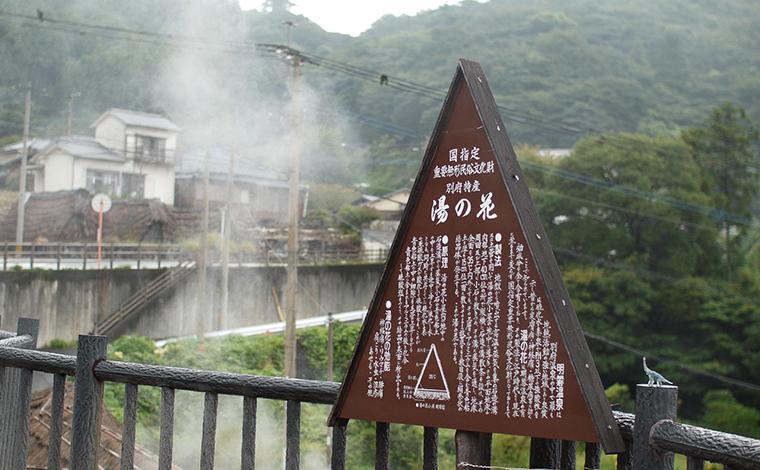 別府温泉の立ち寄り湯やスイーツ巡りも楽しい!1