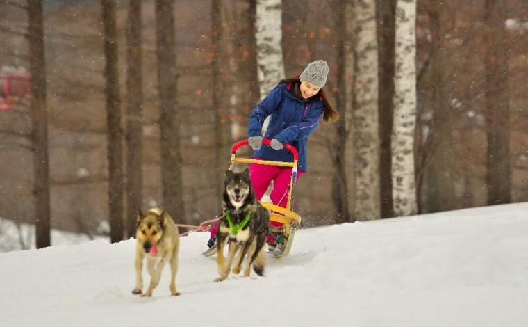 北海道最大級の高原リゾート内にある「ルスツリゾートスキー場」2