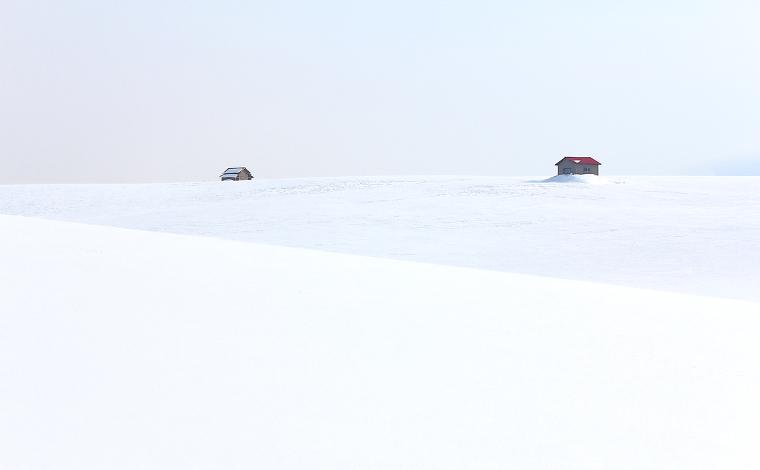 雪原の丘(美瑛町)1