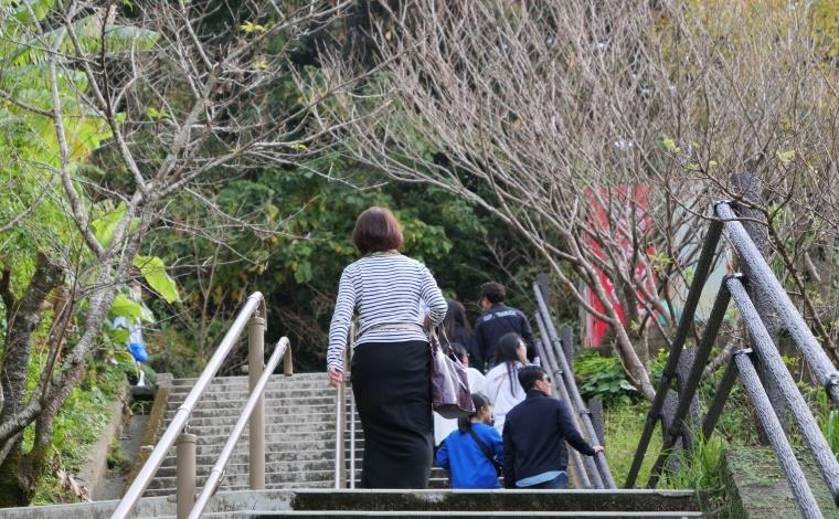 ようやくたどり着いた鵜戸神宮で運玉を2