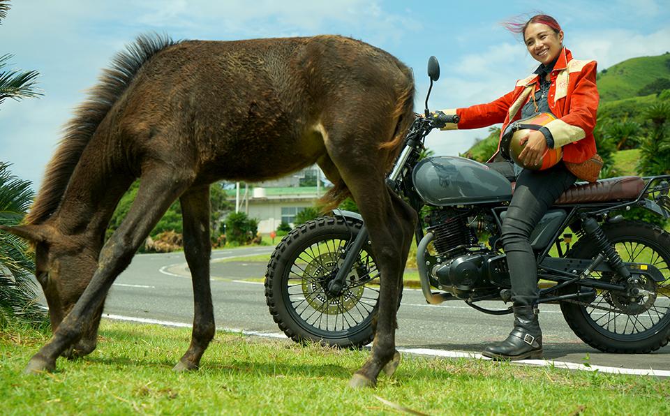 GARUちゃん、鹿児島・宮崎南部をバイクで走る!南九州フェリー&ツーリング旅行